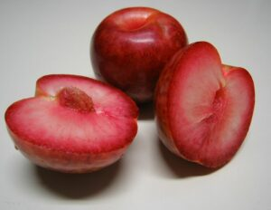 гібриди-терміни слива, абрикос